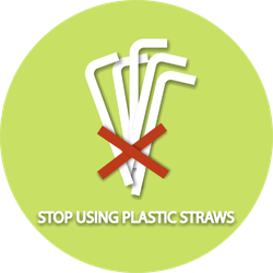 Stop Using Plastic Straws Sticker