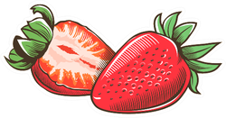 Strawberry In Vintage Sticker
