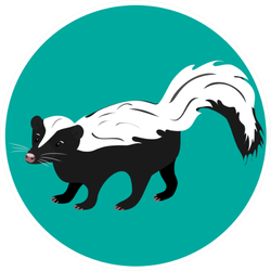 Striped Skunk Standing On A Green Circle Sticker