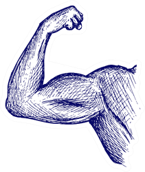 Strong Biceps. Doodle Style Sticker
