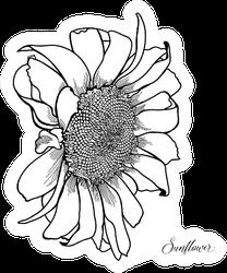 Sunflower Vintage Hand-drawn Sticker