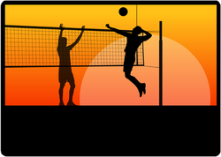 Sunset Beach Volleyball Players Sticker
