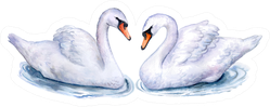 Swans Isolated On White Watercolor Illustration Sticker