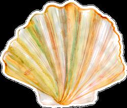 Tan Radial Seashell Watercolor Sticker