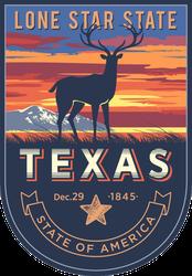 Texas Banner Sticker