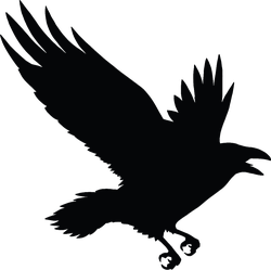 The Black Silhouette Of A Crow Flying Rook Sticker