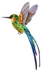 The Image Of A Small Hummingbird Sticker
