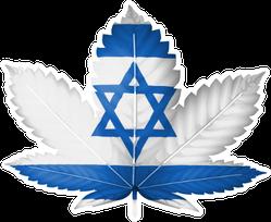 The Israeli Flag Painted On Cannabis Marijuana Leaf Sticker
