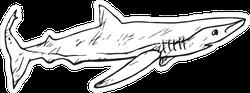 The Sand Tiger Shark Doodle Sticker