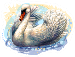The Swan Is Swimming Hand-drawn, Artistic Sticker