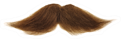 Thick Brown Mustache Isolated On A White Background Sticker