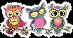Three Cute Colorful Cartoon Owls Sticker