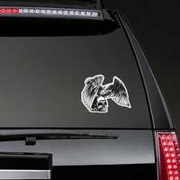 Eagle And Skull Sticker on a Rear Car Window example