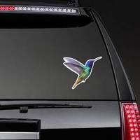 Hummingbird - Golden Tailed Sapphire Hand Drawn Sticker example