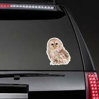 Ural Owl Photo Sticker on a Rear Car Window example