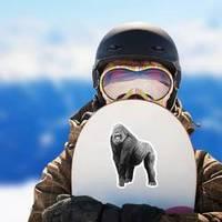 Illustration Of A Gorilla Sticker