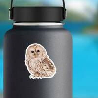 Ural Owl Photo Sticker on a Water Bottle example