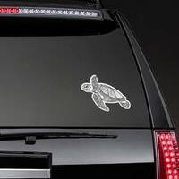 Hand Drawn Turtle Sticker on a Rear Car Window example