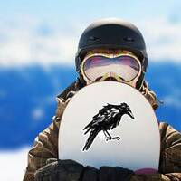 Black Crow Isolated On White Drawn Ink Sticker example