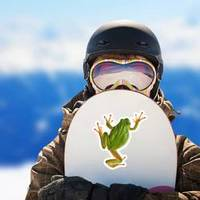 Tree Frog Isolated On White Sticker