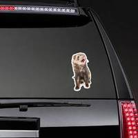 Brown Ferret Mouth Open Sticker