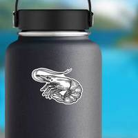 Shrimp Sea Caridea Animal Engraving Sticker