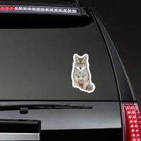 A Lone Coyote Sitting In The Winter Snow Sticker example