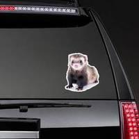 Young, Brown Ferret Sticker