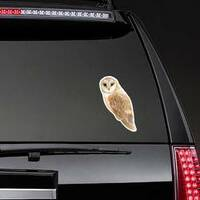 Watercolor Brown Owl Sticker on a Rear Car Window example