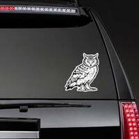 Mean Staring Owl Sticker on a Rear Car Window example