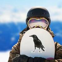 Side View Of A Carrion Crow Isolated On White Sticker example