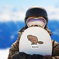 Painted Line Figure Of Beaver With Text Sticker