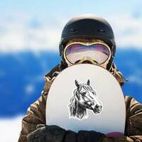 Horse Head Sketch Sticker on a Snowboard example