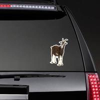 Toggenburg Goat Against White Background Sticker
