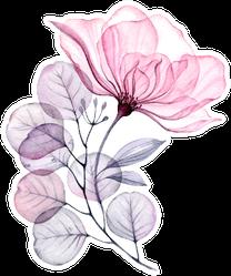 Transparent Floral Set Isolated Arrangement Of Big Pink Rose Sticker