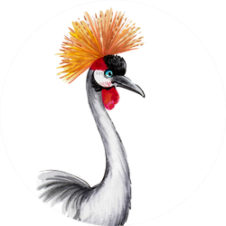 Tropical Crane Bird Ink And Watercolor Illustration Sticker