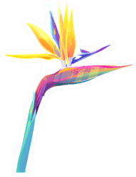 Tropical Flower Colorful Sticker