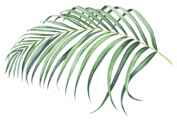 Tropical Palm Branch Watercolor Hand Drawn Illustration Sticker