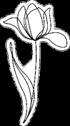 Tulip Flower Line Continuous Sticker