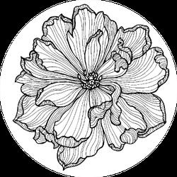 Tulip Flower Top View Line Pattern Sticker