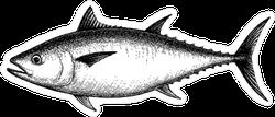 Tuna Illustration Sticker