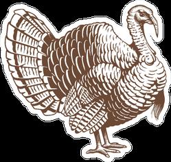 Turkey Hand Drawn Illustration Sticker