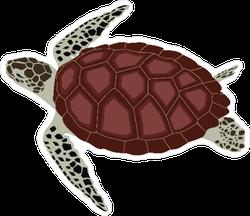 Turtle Illustration Sticker
