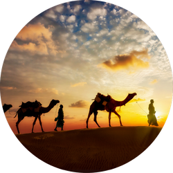 Two Cameleers With Camels Silhouettes Of Desert Sunset Sticker
