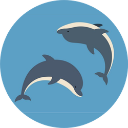 Two Dolphins Jumping Above Sticker