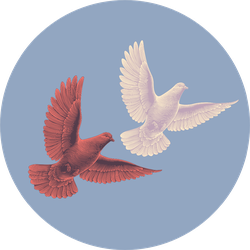 Two Doves Flying In The Sky Sticker