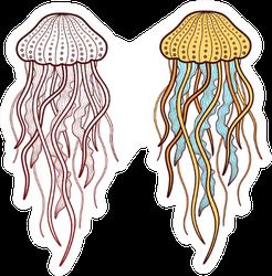 Two Jellyfish Illustration Sticker