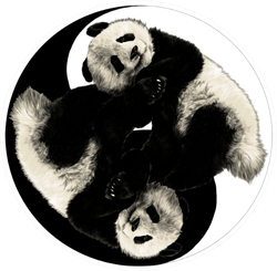 Two Pandas Are On The Sign Yin-yang Sticker