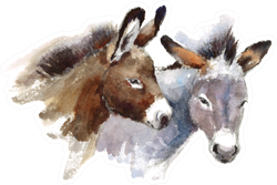Two Watercolor Farm Animals Donkeys Sticker