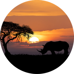 Typical African Scenery, Silhouette Of Rhinoceros Sticker